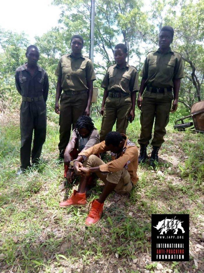 There Is An All-Female Ranger Unit Protecting Zimbabwe Wildlife From Poachers!