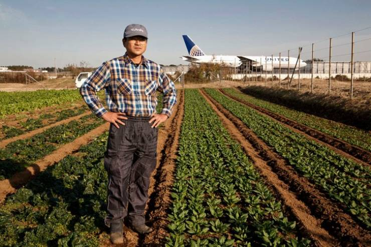 This Japanese Farmer Lives In The Middle Of A Giant Airport!