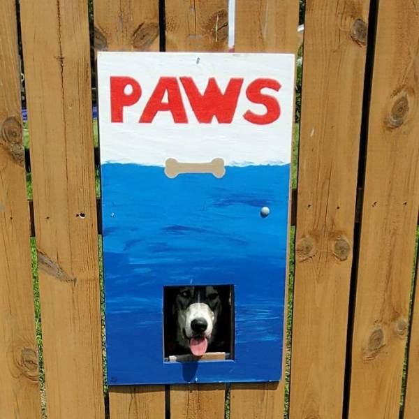 Dogs Love This Fence Hole, So Their Owners Decided To Make It Thematic