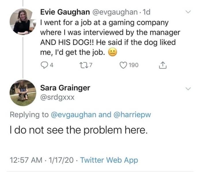 Not Their Best Job Interviews…