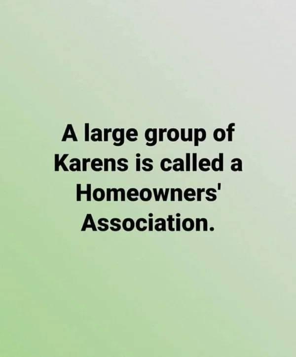 Karens Are Insufferable…