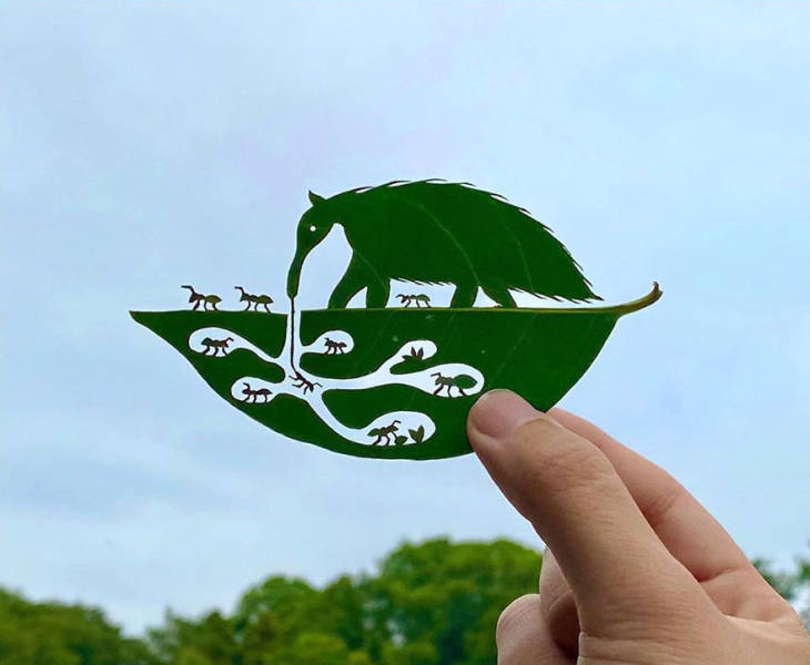 Japanese Artist Turns Tree Leaves Into Intricate Vignettes