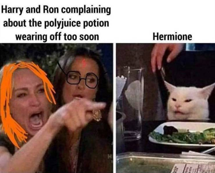 """You Can't Use These """"Harry Potter"""" Memes Outside Hogwarts!"""