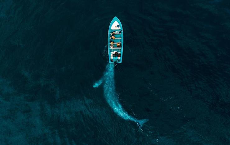 Drone Photography Is Beautiful, And These Contest Winners Prove It!