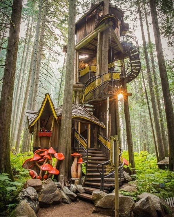 Want Yourself A Treehouse?