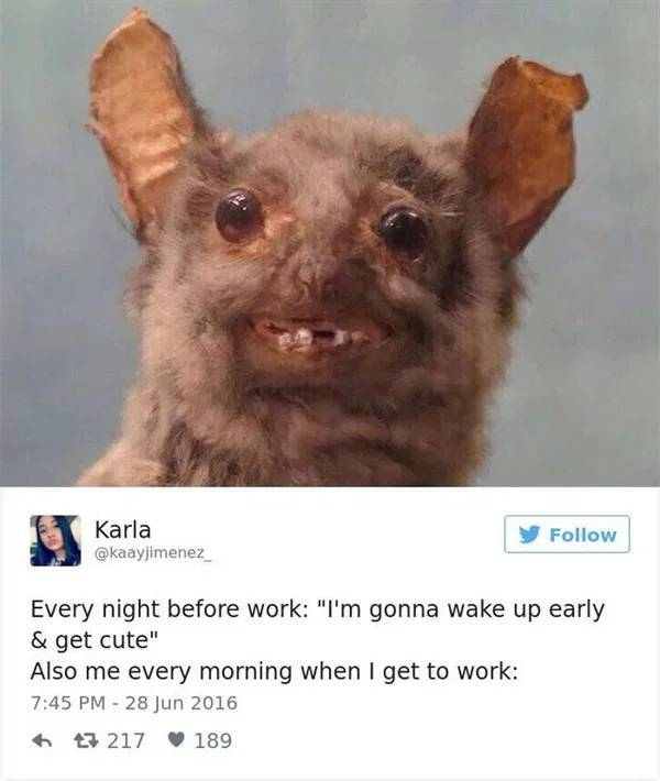 These Work Memes Can Support You While You Are At Work