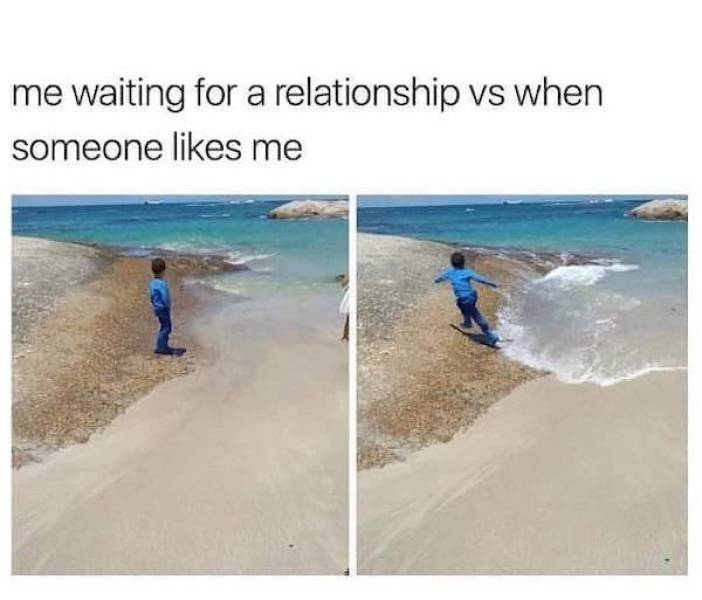 These Memes Are Single And Happy About It