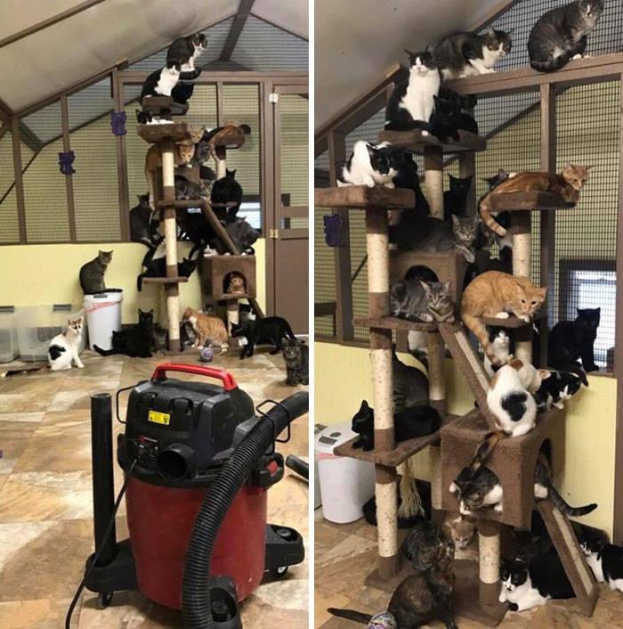 Vacuum Cleaning Isn't Always Successful…