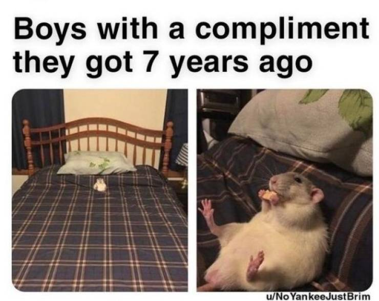 These Wholesome Memes Will Keep You Running