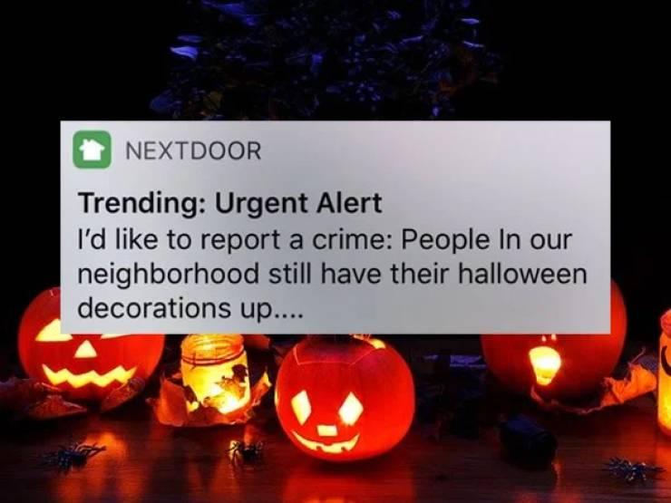 """""""NextDoor"""" Is Filled With Crazy Stuff!"""