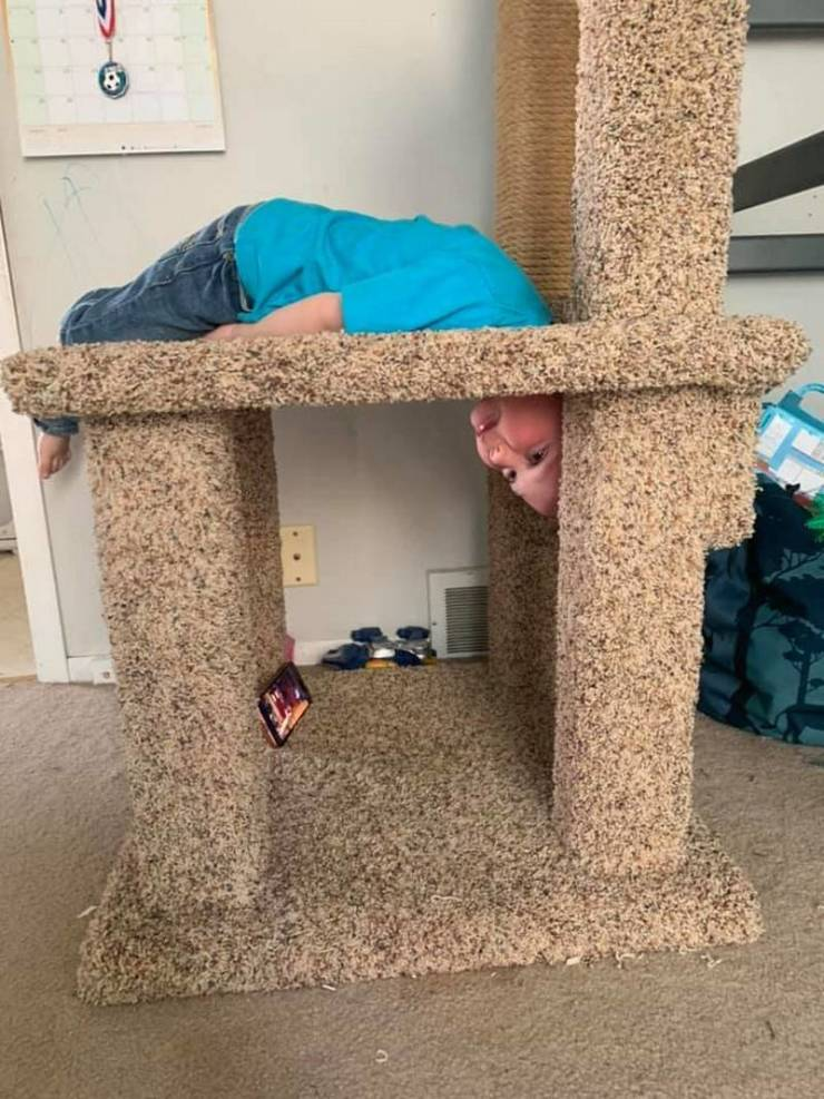 Curious Kid Gets Stuck In A Cat Scratching Play Complex