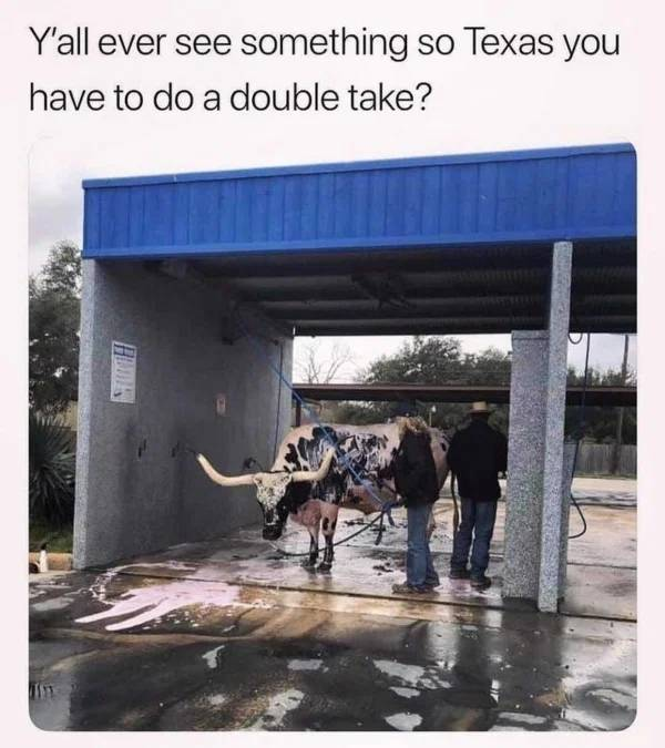This Is Very Texan…
