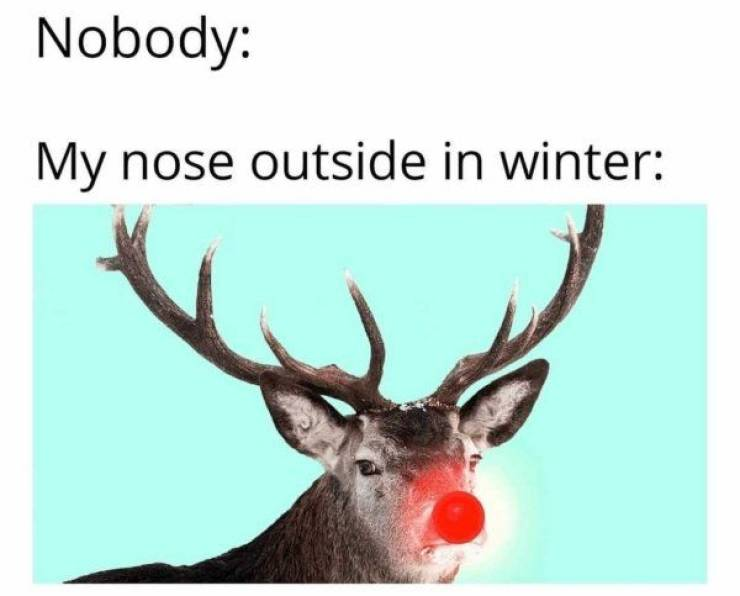 It's Cold Outside, So Laugh At These Memes Instead
