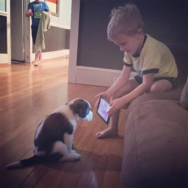 Why Your Kids Might Need A Dog…