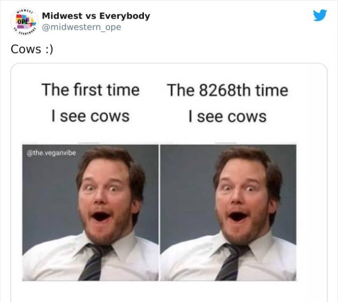 American Midwest Is Just Different…