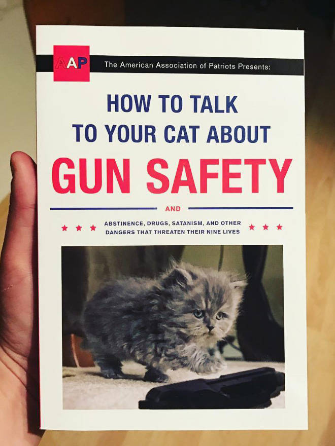 Something's Not Right About These Cat Books…