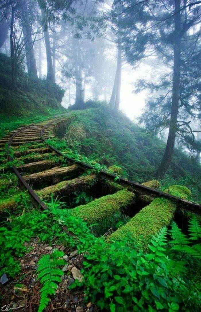Creepy And Majestic Photos Of Abandoned Places