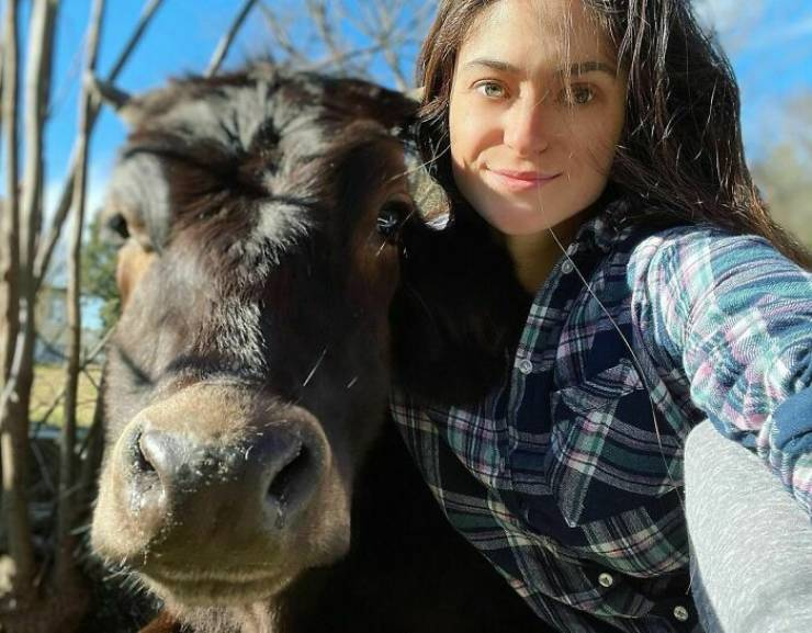 Woman Saves Abandoned Animals Of All Species, And Their Count Is Already Over Two Hundred!