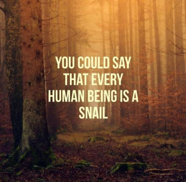 This AI Generates Motivational Quotes. Or At Least It Tries To…