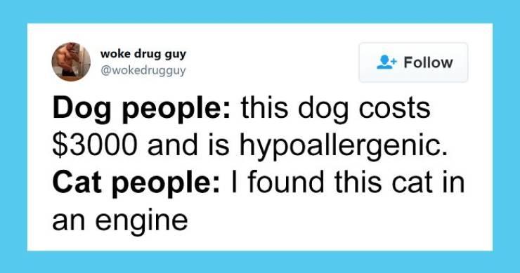Cat People Versus Dog People