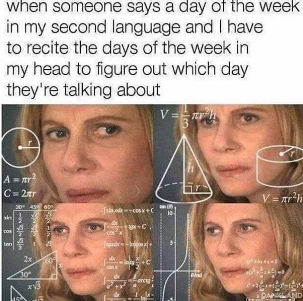 Do You Speak These Language Memes?