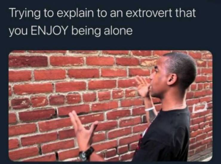 Introverts, You Can Hide These Memes From Everyone