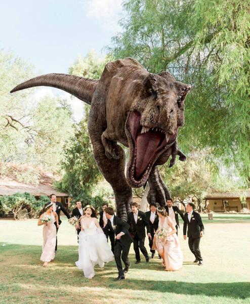 These Weddings Look Like Fun!