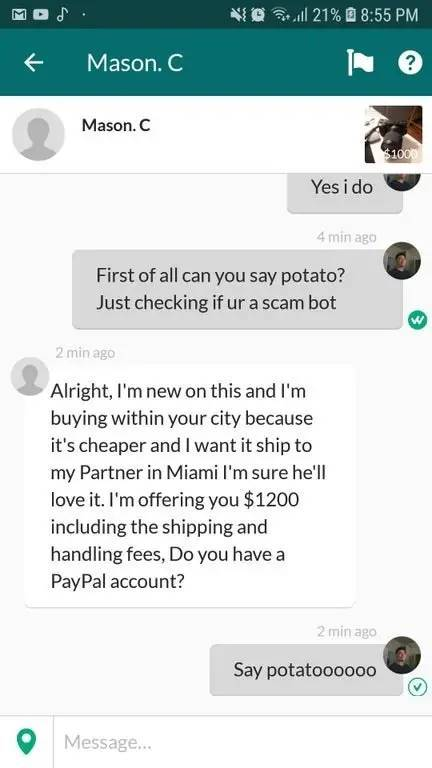 No Scammers Shall Be Spared!