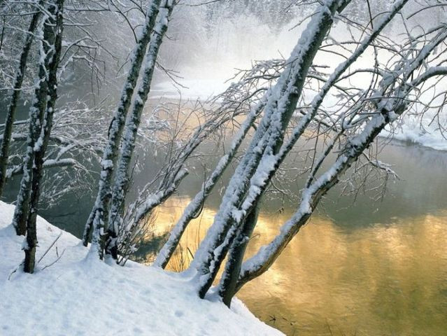 Winter is beautiful (40 pics)