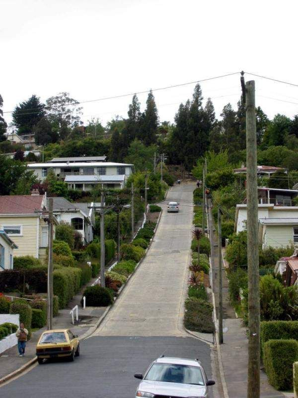 Baldwin street, the steepest street in the world (11 pics)