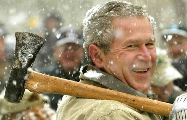 Facial expressions of George Bush (29 photos)