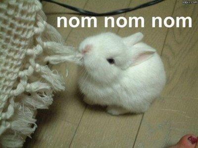 Funny series of NOM NOM NOM (19 pics)
