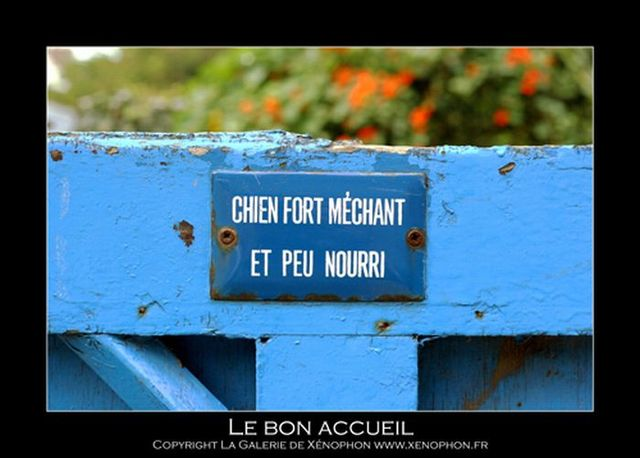 About the French with humor (50 pics)