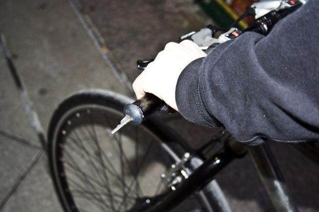 Bicyclist revenge (3 pics)