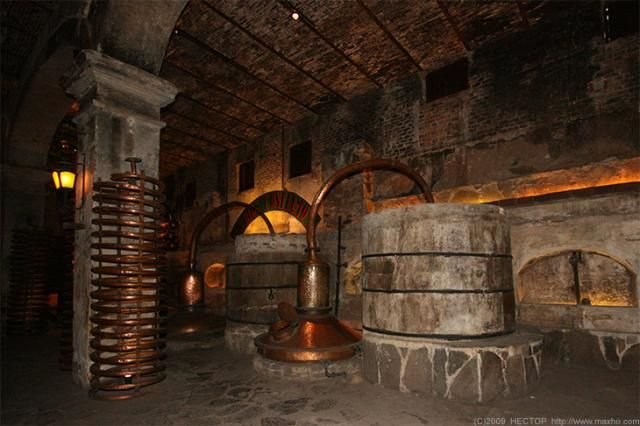 Old tequila distillery (16 pics)