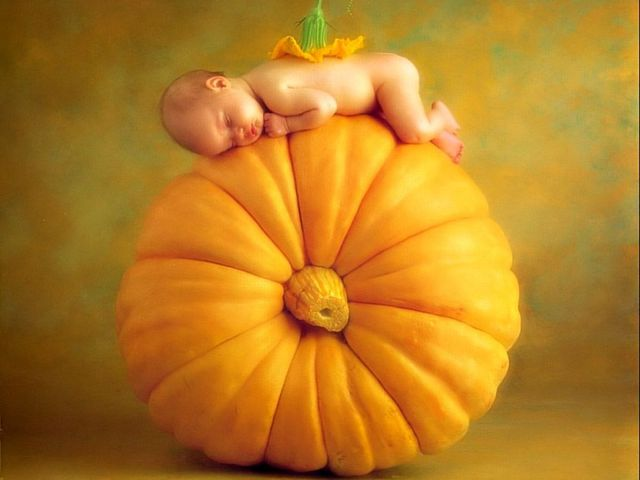 15 anne geddes and her baby pictures 111 pics