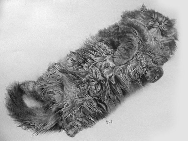 Pencil drawings (49 pics)