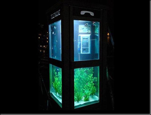 Aquarium in a phone booth (5 pics)