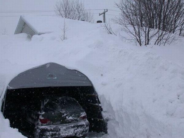 Snowy winter (11 pics)