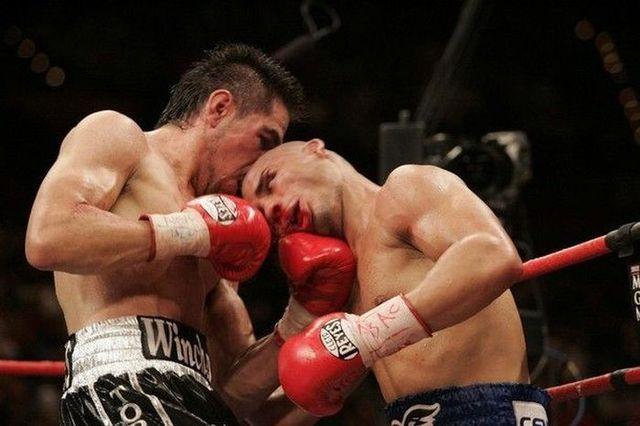 Fight! (45 pics)