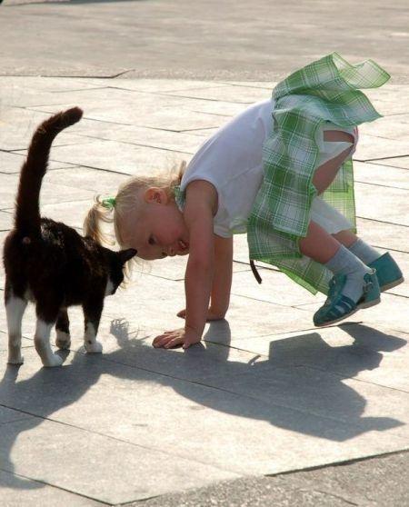 Children and animals (34 pics)