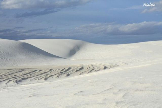 White sands of New Mexico (17 photos)