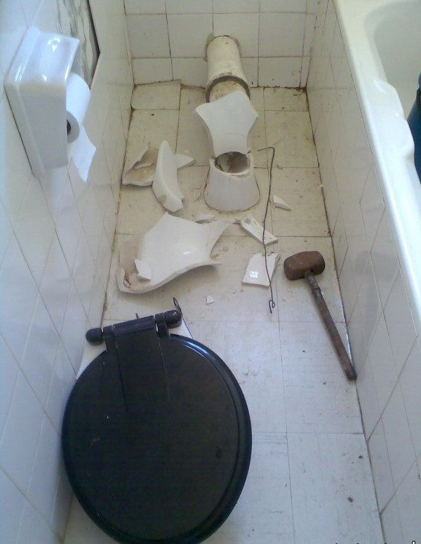 Why it is dangerous to go to the toilet in India (5 pics)