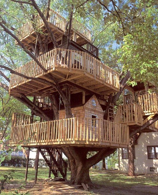 Tree houses (31 pics) - Izismile.