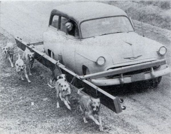 Crazy and incredible inventions from the past (44 pics)