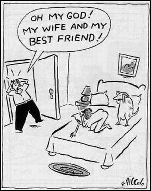 Funny picdump (122 pics)