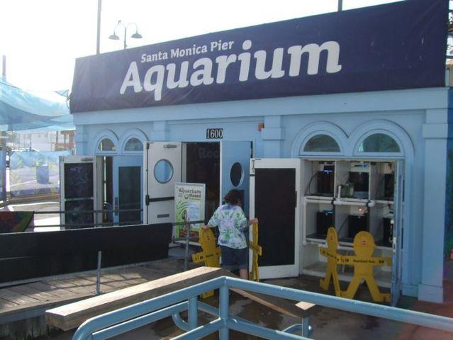Octopus flooded California Aquarium (15 pics)