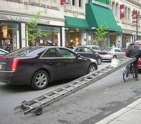 Collection of pictures with human stupidity (53 pics)