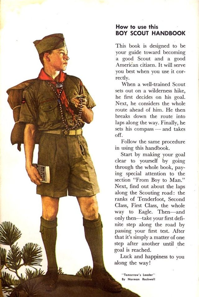 1965 Boy Scout Handbook (16 images)