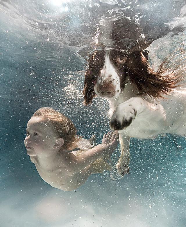 Deep waters fairy tale (59 pics)